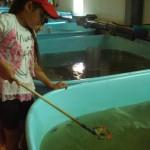 экскурсия на Анюйский рыбоводный завод 10.07.12 (6)